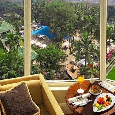 Premier Pool View